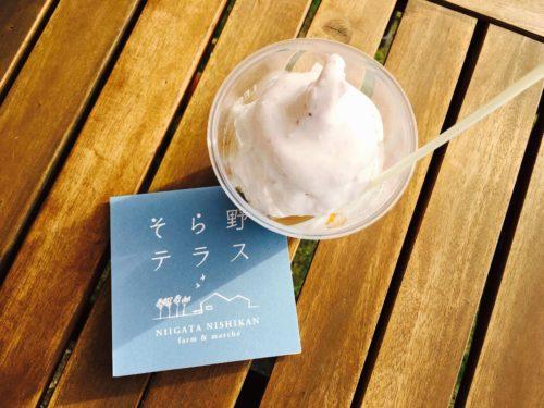 新潟市西蒲区 そら野テラス アイス
