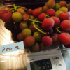 お得!!1kg1,000円のブドウが300円に!きゃー!!|聖籠町観光ぶどう園(田中ぶどう園